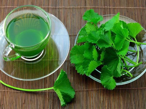 Rau mùi tây và những lợi ích tuyệt vời đối với thận mà bạn chưa hề biết