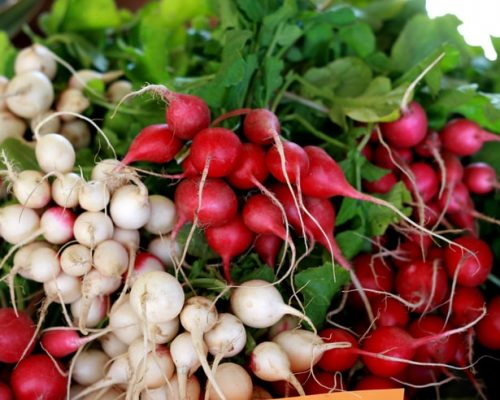 Củ cải - thần dược đối với sức khỏe trong mùa đông