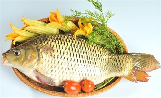 Những lợi ích tuyệt vời của cá chép đối với sức khỏe